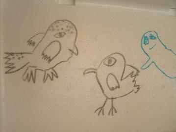 polarbird.jpg